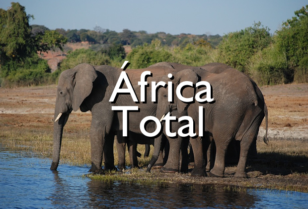 Africa Total